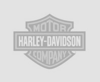 2014 harley davidson forty eight