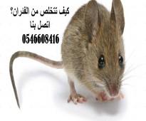 افضل مكافحة للفئران القضاء علي الحشرات  افضل مكافحة للصراصير ضمان 3 اشهر 6 اشهر عقود سنوية