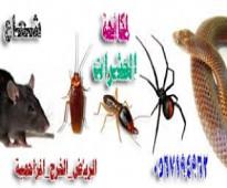 شركة مكافحة حشرات بالرياض والدمام  0567194962 شعاع كلين