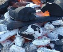 تاجر فحم طلح سودانى