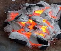 شركة تصدير فحم طبيعي
