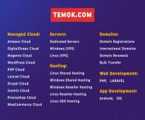Best Web Hosting | Dedicated Server | Temok IT Services