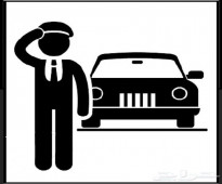 سائق خاص مصري