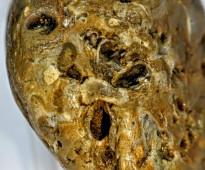 سليمانى ملكى أحفورى أصل الاحجار الكريمة