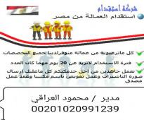 عماله مصريه