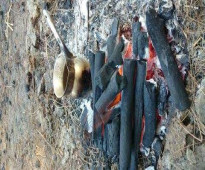 فحم الجزورين للشواء