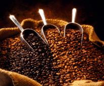 قهوة مختصة وايطالية اسبرسو للبيع بالجملة فقط