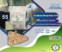 sale Sheep feed 21% for from Arabian Generation Company