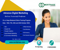 Meritphase is one of the fastest growing training facilitator in the world.