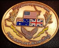 وسام التحالف الدولي