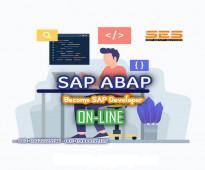 Professional SAP ABAP Developer Course