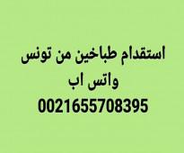 استقدام اطباء من تونس في كل الاختصاصات