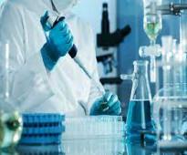 ابحث عن عمل في مختبرات