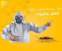 شركة مكافحة حشرات بالمدينة المنورة 0509590993