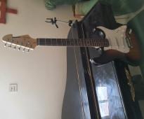 جيتار كهربائي Electric guitars Finder Sequier
