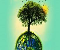 اصدار تراخيص بيئية وعمل الدراسات من جهة معتمدة فئة A