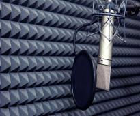 مطلوب مهندس صوت للعمل