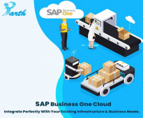 SAP Business One Cloud Solutions-Parth