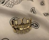 قريلز اسنان ذهبية وفضية زينة
