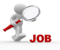 ابحث عن وظيفة كمحاسب اول