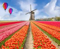 كريم للسياحة في هولندا و اوروبا