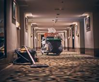 خدمات التنظيف والصيانة ومكافحة الحشرات